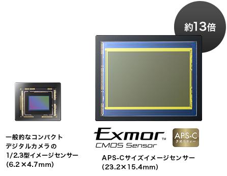 original_ILCE-QX1_sensor_img.jpg